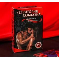 """Игра """"Анатомия страсти"""" 18+"""